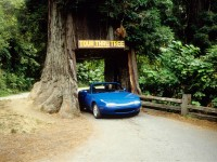 1990-Mazda-MX-5-Miata-driving-through-tree