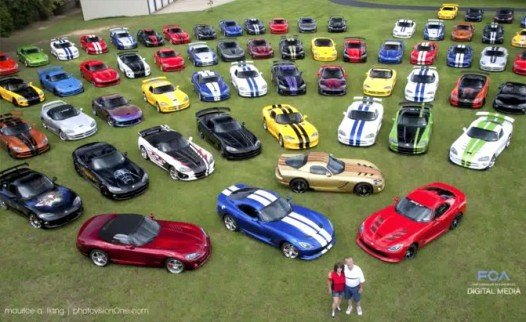 The world's biggest Viper collection