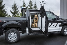 2016-ford-f-150-police-4