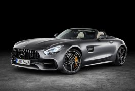 mercedes-benz-amg_gt_c_roadster-2017-1024-08