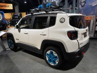 Jeep Renegade Frostbite (3)